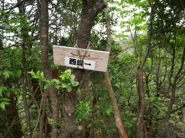 20190602 銚子ヶ口_190603_0137.jpg