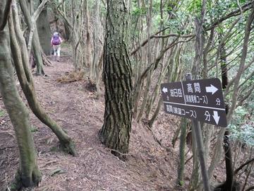20190923 油日岳〜那須ヶ原山_190923_0208.jpg
