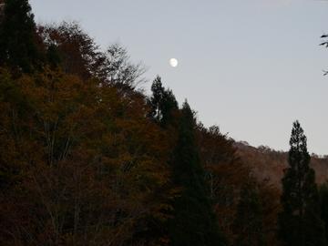 20191109 夜叉ヶ池_191110_0008.jpg