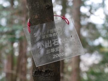 20191222 魚ノ子山_191222_0179.jpg