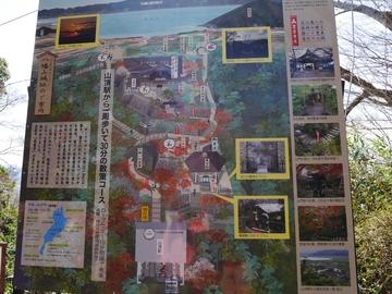 20200320 八幡山_200320_0191.jpg