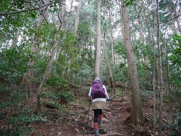 20200320 八幡山_200320_0360.jpg