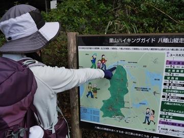 20200320 八幡山_200320_0363.jpg