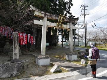 20200320 八幡山_200320_0366.jpg