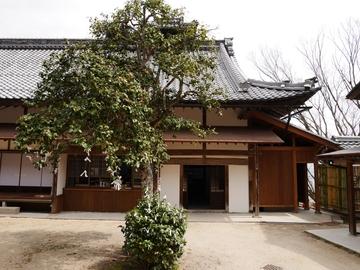 20200322 荒神山_200322_0005.jpg