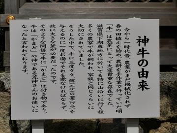 20200322 荒神山_200322_0015.jpg