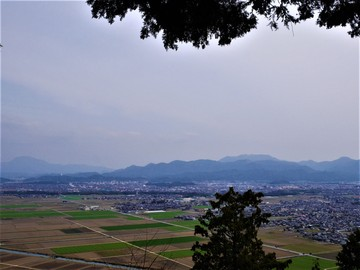 20200322 荒神山_200322_0043.jpg