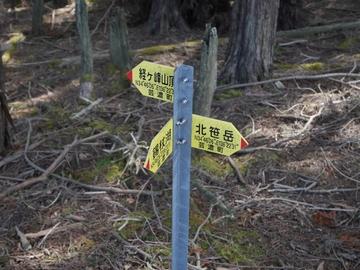 20200411 経ヶ峰_200411_0210.jpg