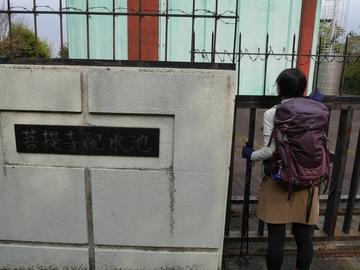 20200426 菩提寺山_200426_0004.jpg