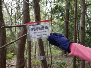 20200426 菩提寺山_200426_0109.jpg