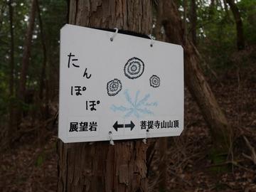20200426 菩提寺山_200426_0130.jpg